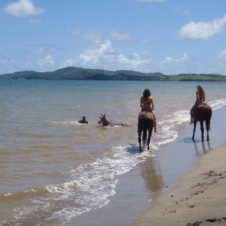 MADININA PONEY CLUB
